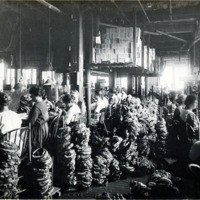 A.E. Little and Company, shoe manufacturer; stitching room, 70 Blake Street: View 7