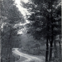Great Woods Road near eastern entrance, Lynn Woods