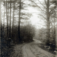Waycross Road, Lynn Woods