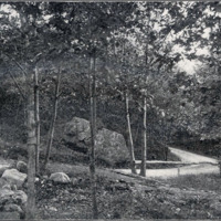 Great Woods Road, from Echo Rock, Lynn Woods