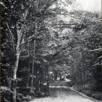 Lynn Woods, about 1893