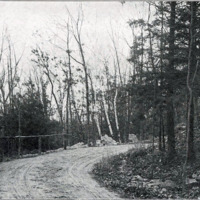 Penny Brook Road near Walden Pond