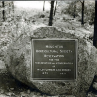 Houghton Horticultural Society tablet of rock in Lynn Woods
