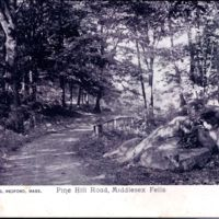 Pine Hill Road, Middlesex Fells.