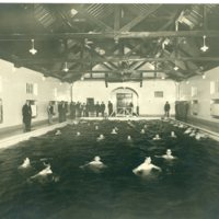 Borden Gym's Swimming Pool