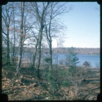 Walden Pond, 1975