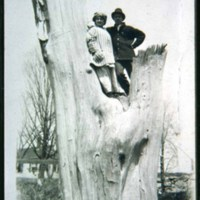Leona & Percy Cutter in a huge tree on Cinder Banks