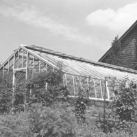 Sunbeam Farm, greenhouse