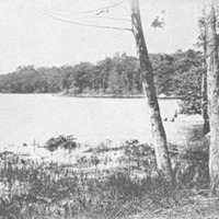 Breed's Pond, Lynn, Massachusetts