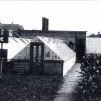 R.L. Pitman's Brookside Greenhouse, circa early 1900s