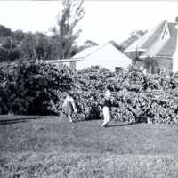 Crystal Lake, great New England hurricane of 1938, September, 1938